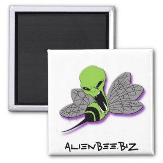 Imán extranjero del cuadrado de la abeja
