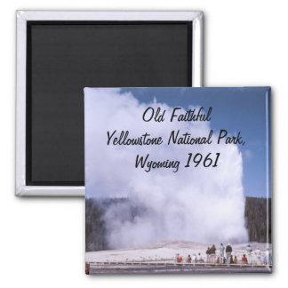 Imán fiel viejo del parque nacional de Yellowstone