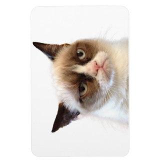 Imán flexible del gato gruñón