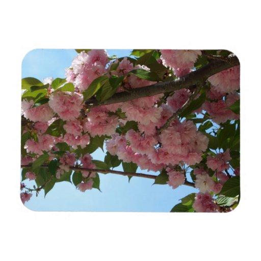 Imán flexible floreciente doble del cerezo