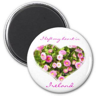Imán floreciente rosado del corazón