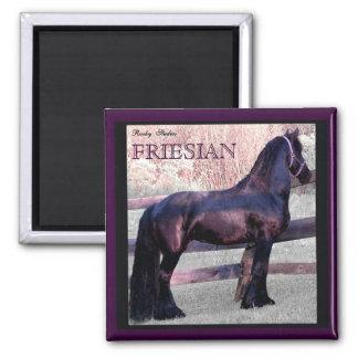 Imán frisio grande 2 del caballo