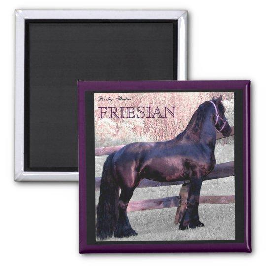 Imán frisio grande 2 del caballo imanes