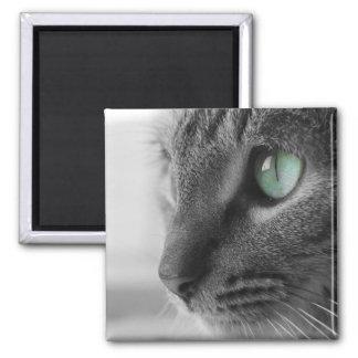 Imán - gato temático