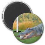 Imán Golfing del cocodrilo de la mentira peligrosa