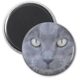 Imán gris de la cara del gato