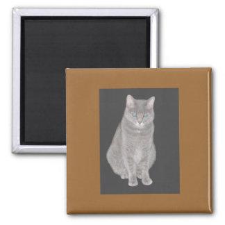 Imán gris del gato