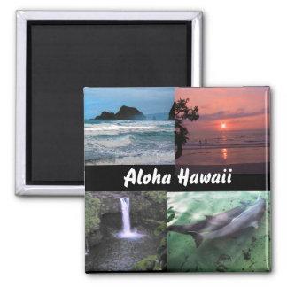 Imán hawaiano de la colección del paisaje