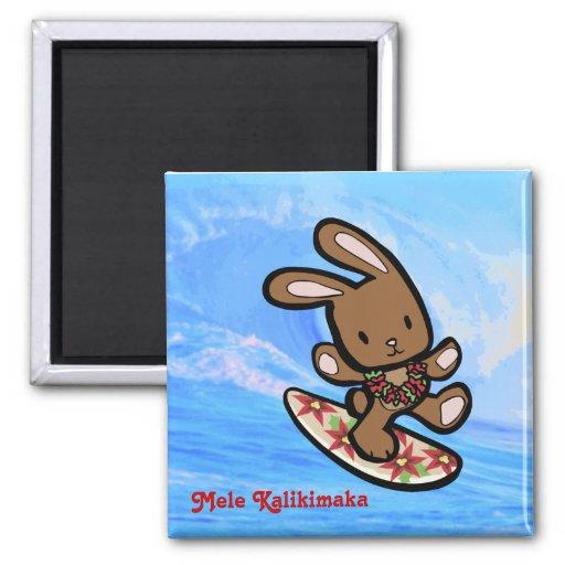 Imán hawaiano del navidad del conejito que practic