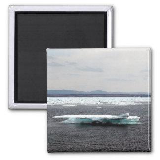 Imán hermoso del iceberg