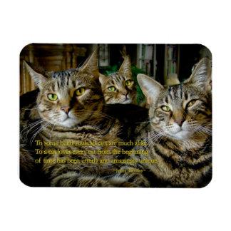 Imán inspirado del gato - todos los gatos son únic