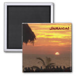 Imán jamaicano de la puesta del sol - modificado p