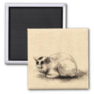 Imán japonés del dibujo de la tinta del gato nacio