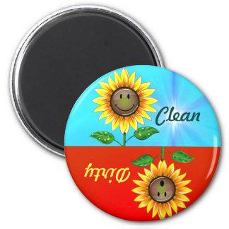 Imán limpio sucio de la situación del lavaplatos