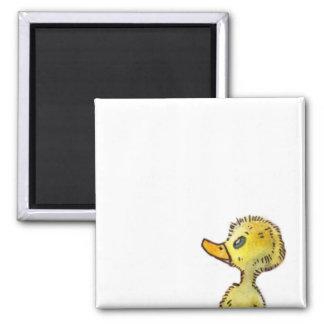 Imán lindo del personalizable del pato