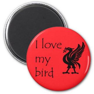 Imán - Liverpool Liverbird