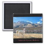 Imán, Llamas Salar de Uyuni, Bolivia Imán Cuadrado