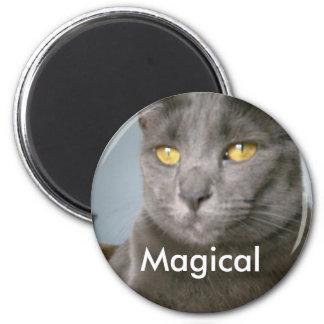 Imán mágico
