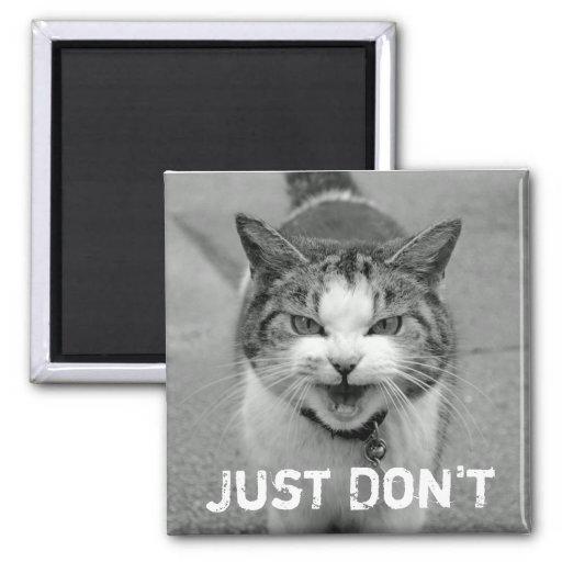 Imán malhumorado del gato