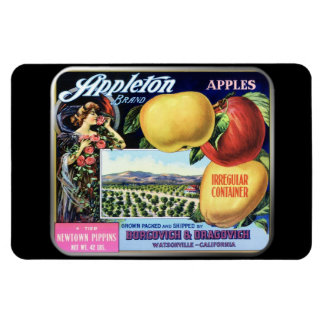 Imán - marca de Appleton por GalleryGifts