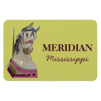 Imán meridiano