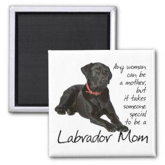 Imán negro de la mamá del laboratorio