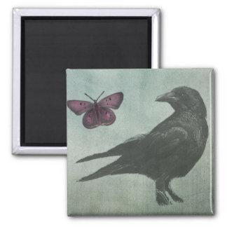 Imán negro del cuervo y de la mariposa