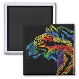 Imán (negro) del leopardo del arco iris