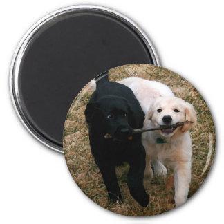 Imán negro y blanco de los perritos