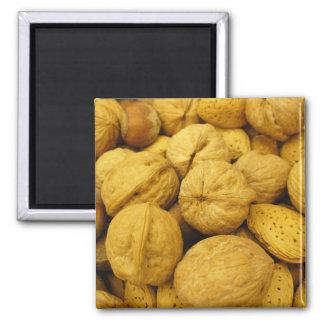 Imán Nuts 001