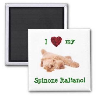 Imán, ofreciendo el perrito magnífico l de Spinone