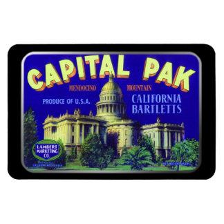 Imán - Pak capital por GalleryGifts