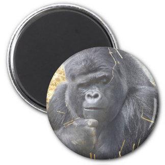 Imán pensativo del gorila