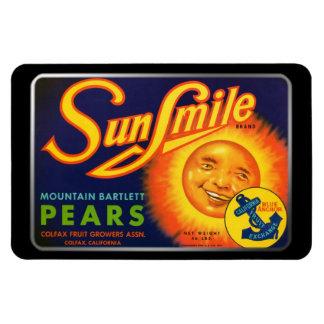 Imán - peras de SunSmile por GalleryGifts