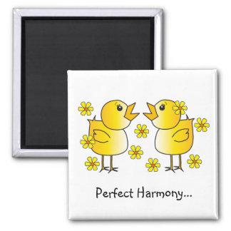Imán perfecto de la armonía