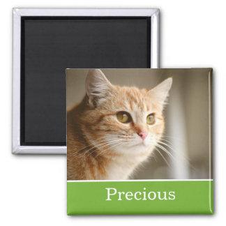 Imán personalizado verde de la foto del mascota de