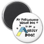Imán portugués del perro de la agilidad del perro