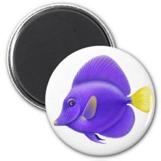 Imán púrpura de Sailfin Tang
