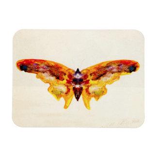 Imán púrpura y amarillo del vintage de la mariposa