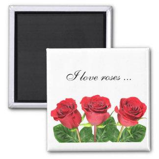 Imán rectangular con los rosas imanes
