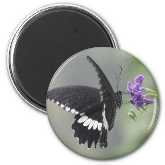 Imán redondo del jardín de la mariposa