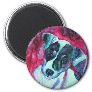 Imán redondo del perrito de Jack Russell Terrier -