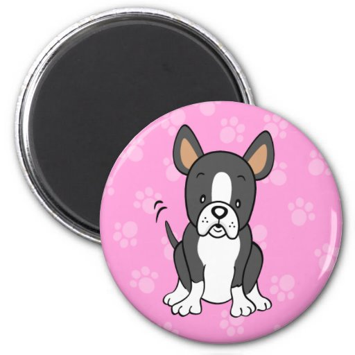 Imán redondo lindo de Boston Terrier del dibujo an