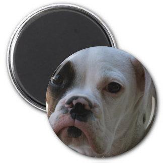 Imán redondo observado negro del perro del boxeado