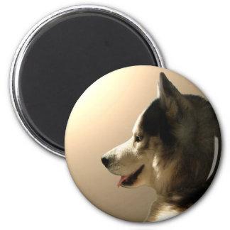 Imán regalo de Alaska del perro de trineo del imán