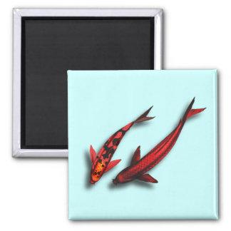 Imán rojo del cuadrado de los pescados de Koi