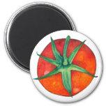 Imán rojo del tomate