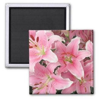 Imán rosado de Lillies