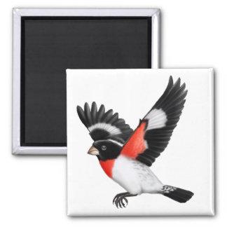 Imán salvaje del pájaro del pájaro color de rosa d