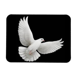 Imán solitario del premio de la paloma del blanco
